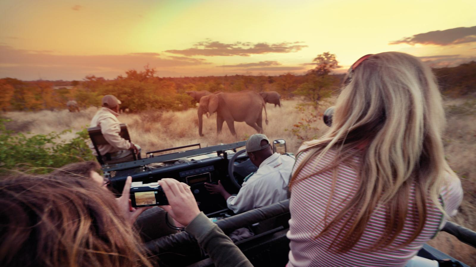 Explore Kruger National Park