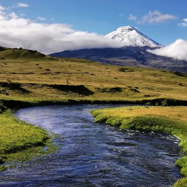 Ecuador: Amazon, Hot Springs & Volcanoes