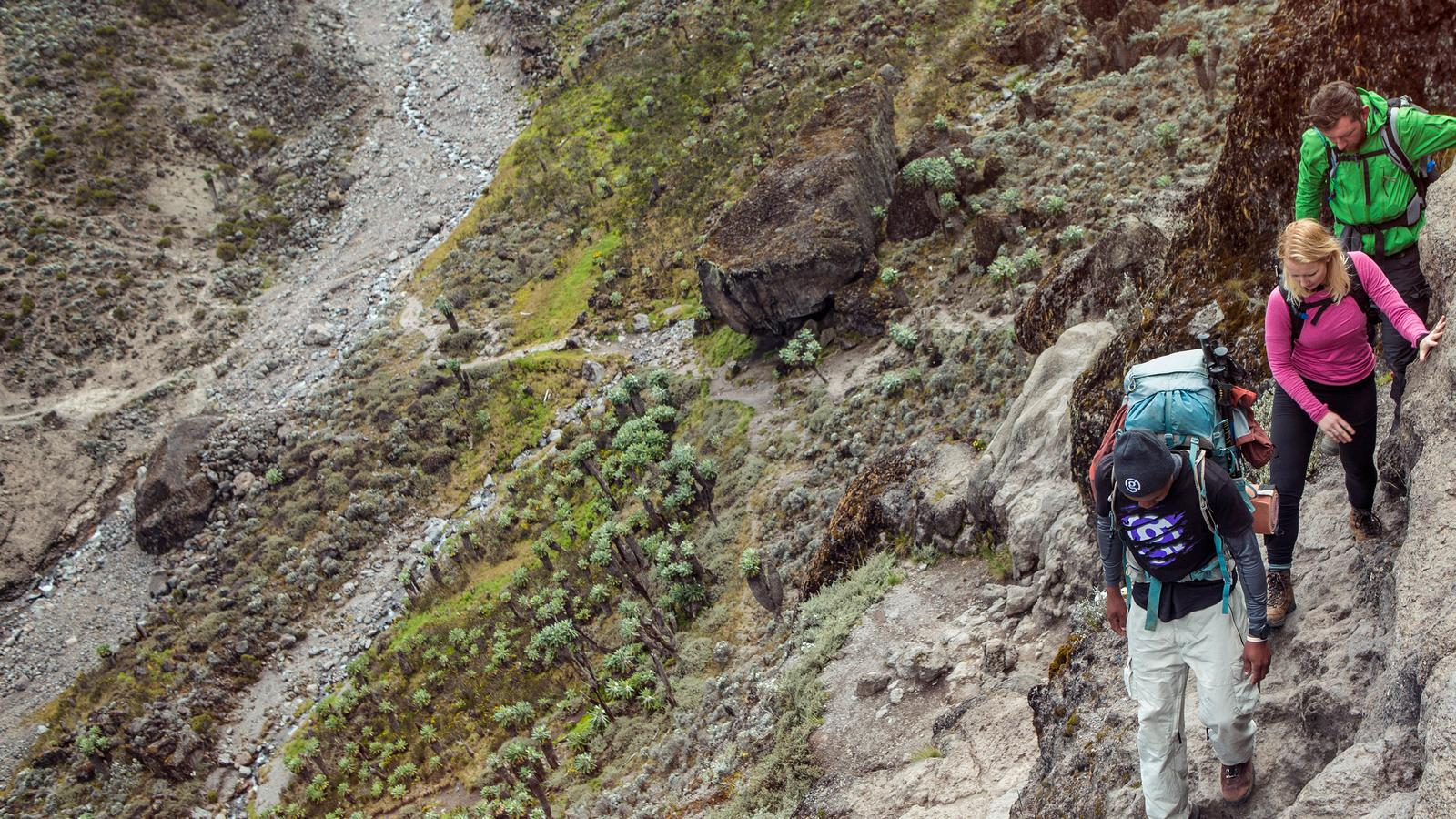 Travellers and their guide walking up the Barranco wall in Kilimanjaro, Tanzania