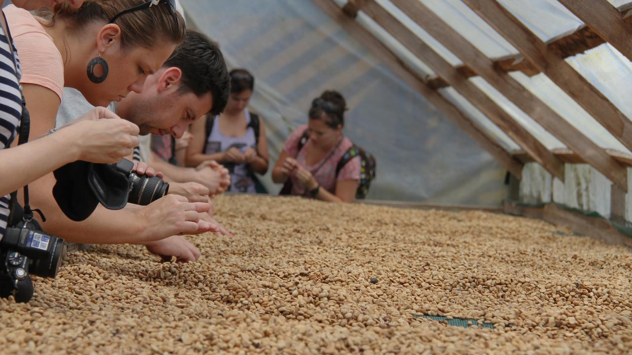 Better beans better coffee better communities Better