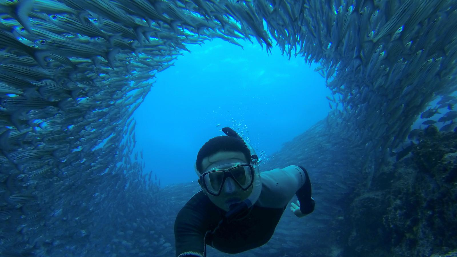CEO takes the best underwater selfie in the Galapagos