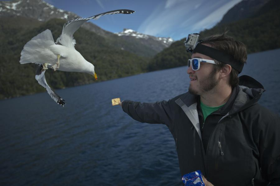 Watch these seagulls soar over the rolling waves of Nahuel Huapi Lake, where a strange monster is said to dwell.