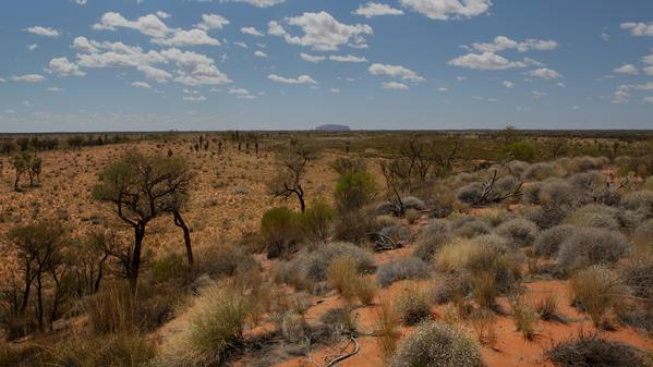 Go north with Cailin O'Neil as she explores seven things to do in the Northern Territory of Australia