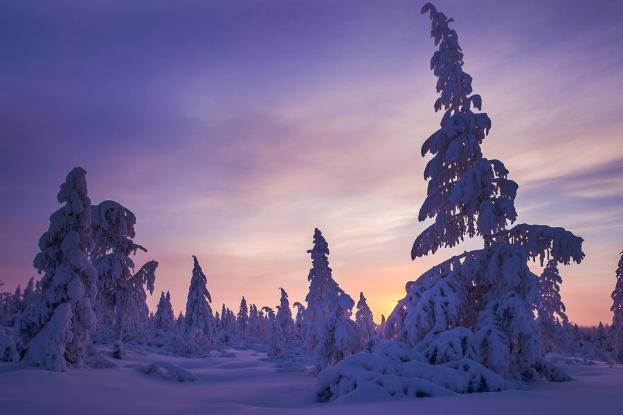 Celebrate Christmas alongside gnomes, gingerbread towns, and the northern lights in Norway.