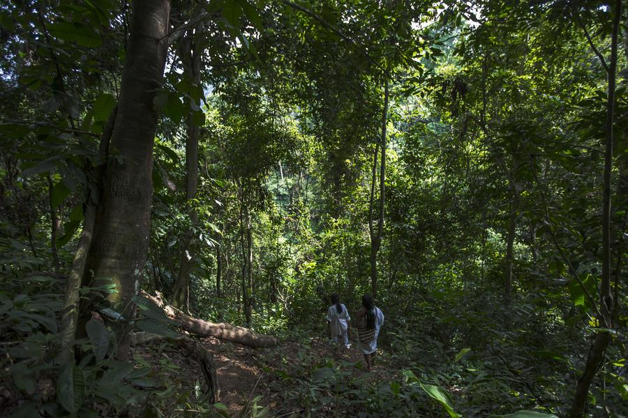 How to take care even on a leisurely walk through the lush Colombian greenery