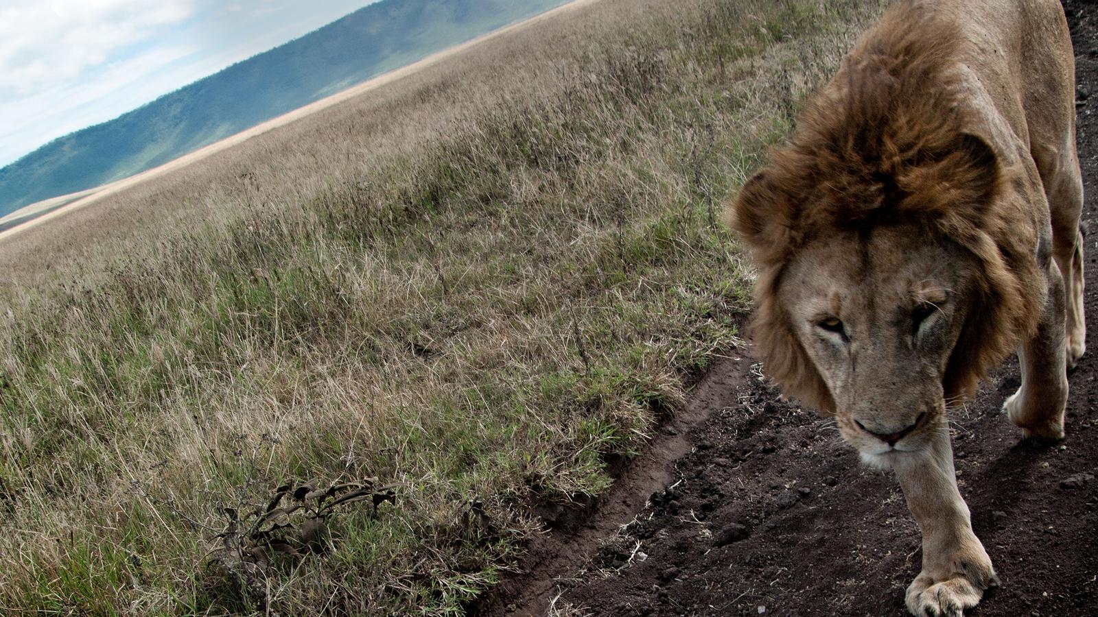 tanzania zanzibar adventure in tanzania africa g adventures