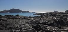Galapagos Central Islands aboard the Xavier III