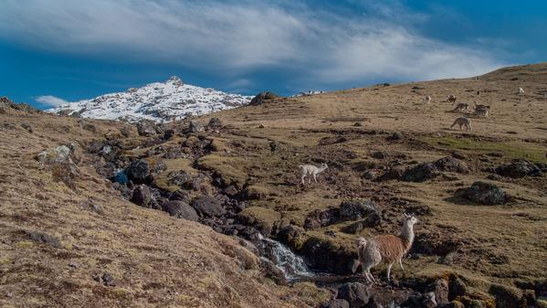 G Adventures photographer and art director Leonardo Tamburri takes us through the Lares Valley, not only to capture its unique landscapes, but to offer insight into this remote and rarely visited region.