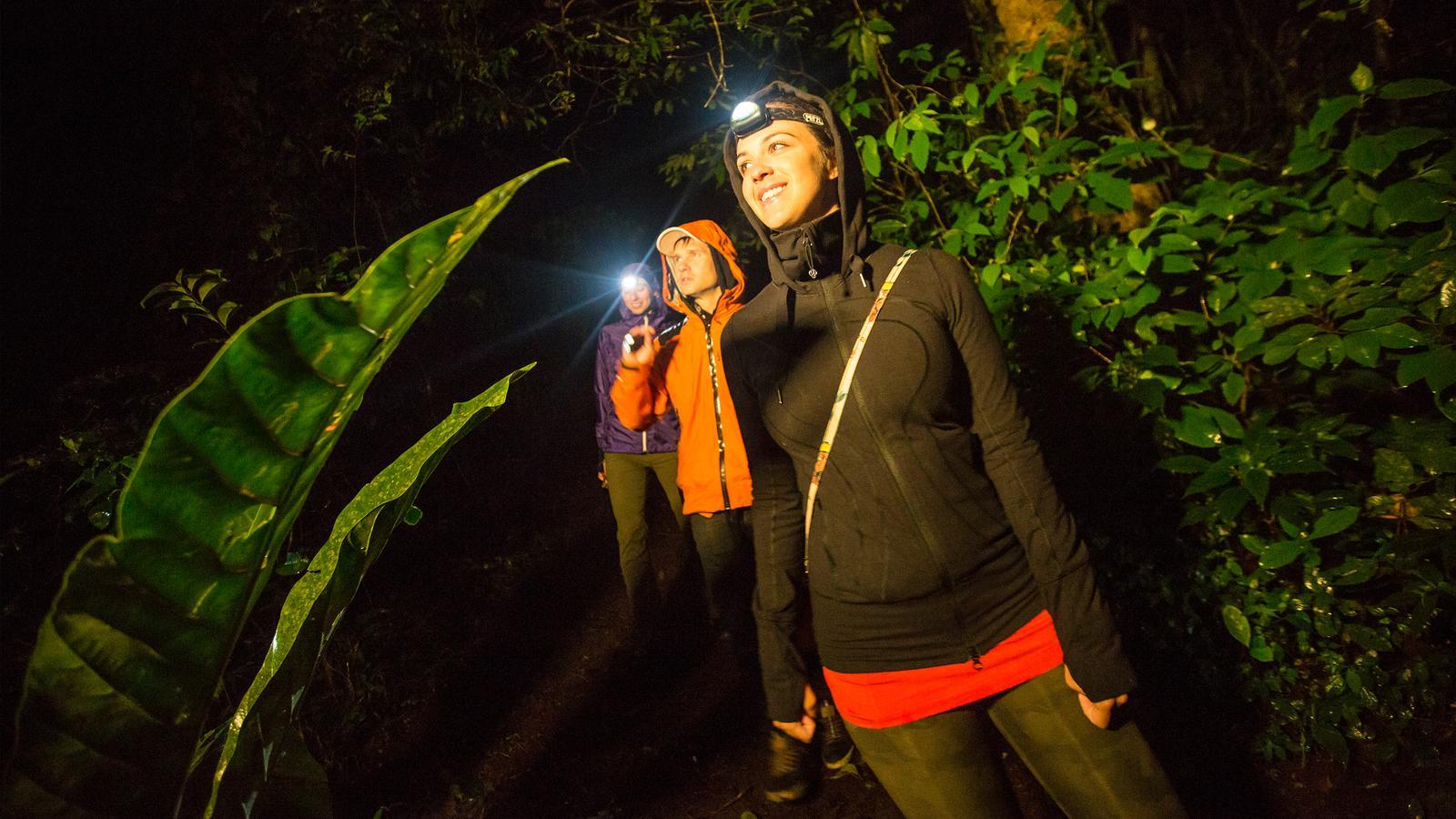 Erlebnisreise durch Costa Rica