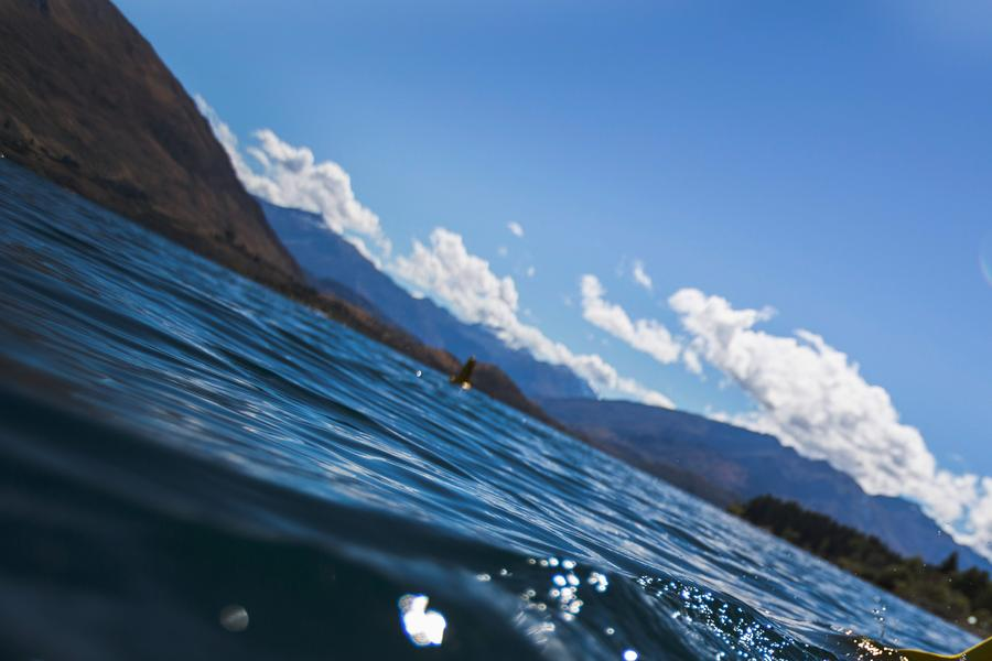 Take a deep breath and share a few seconds with a pod of dolphins off the coast of Kaikoura.