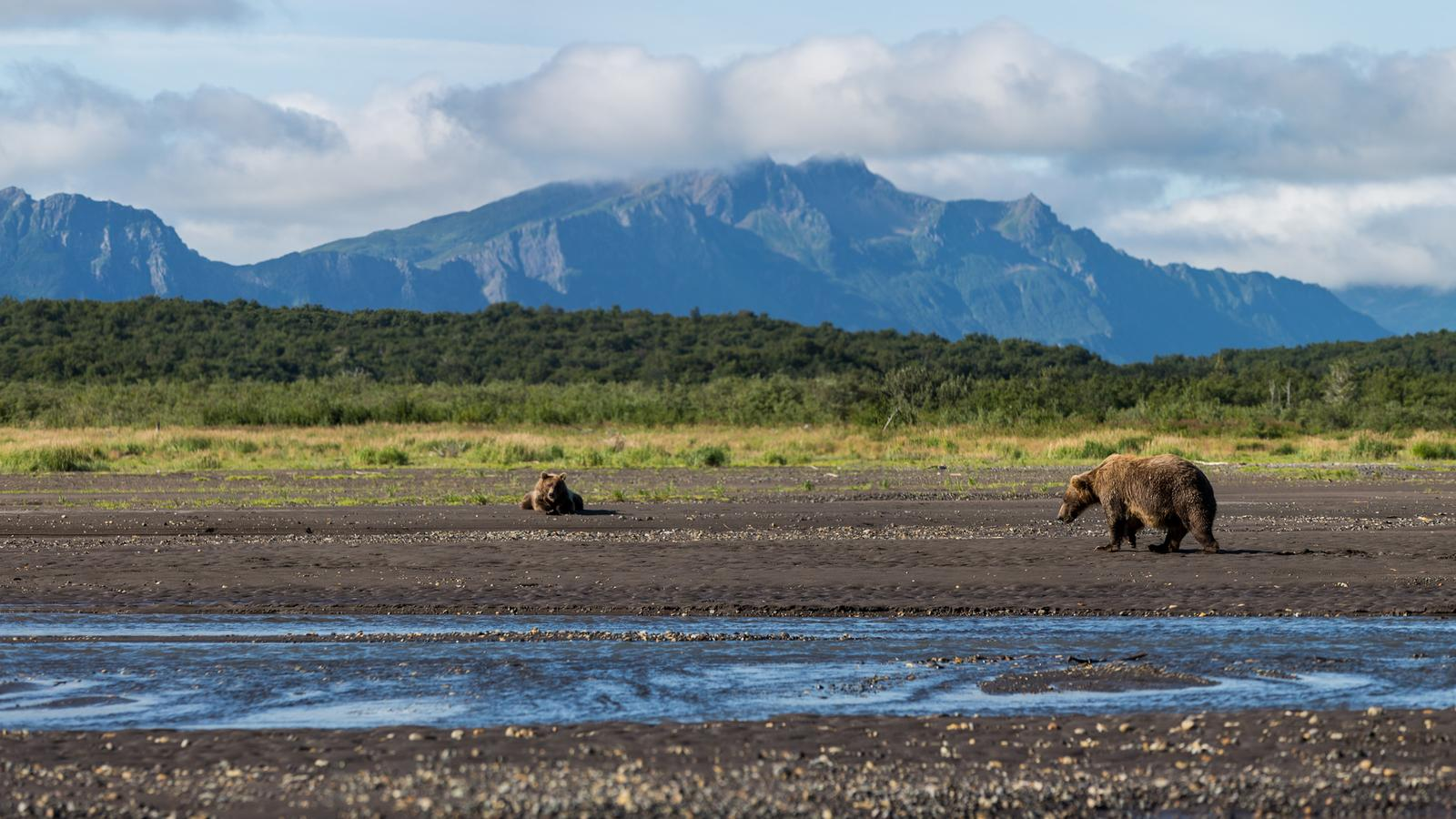 Highlights Of Alaska In United States North America G