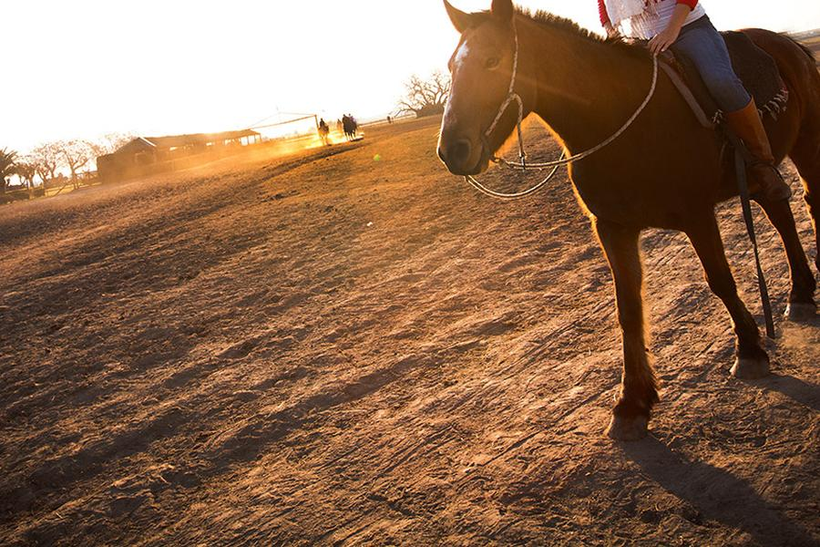 In Argentina, the gaucho is more than just a cowboy