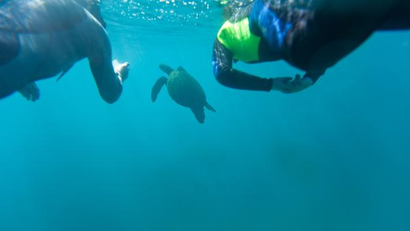 Dive into some Galápagos trivia with Wanderer-in-Residence Gary Arndt.