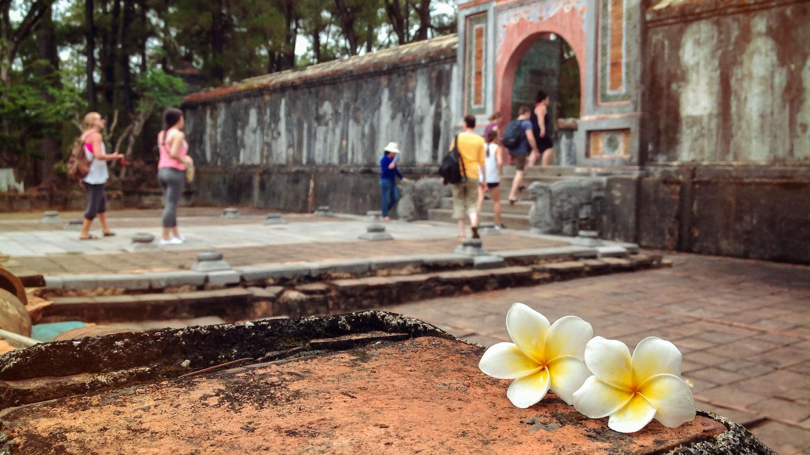 Indochina explorer in thailand asia g adventures travellers walk up the steps of hue palace as a beautiful plumeria flower sits in the izmirmasajfo