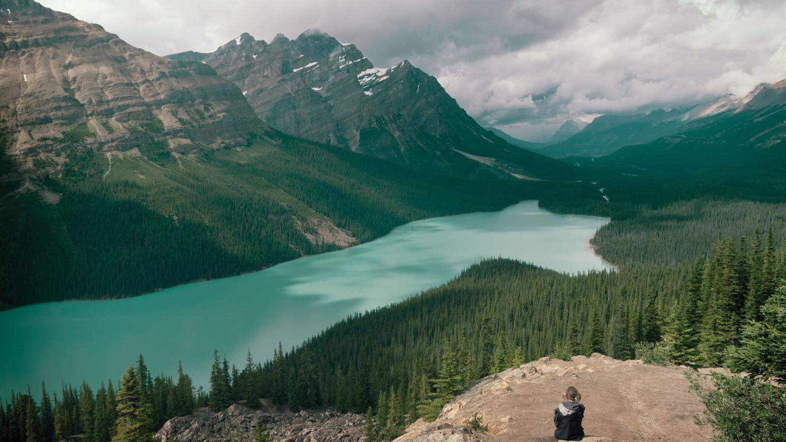 discover the canadian rockies