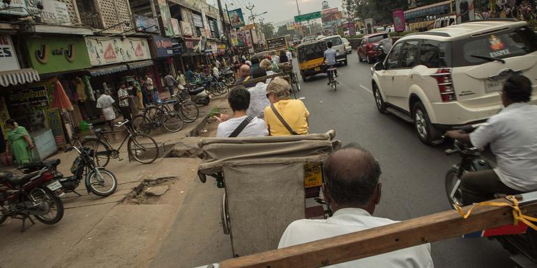 Delhi Day Tour: Cycle Qutab Minar and Meharuli (half day)