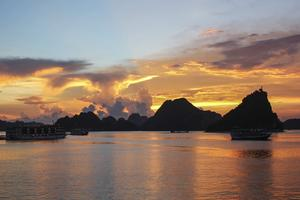From UNESCO heritage to diverse flora and fauna, Vietnam's famous bay is worth the boat ride
