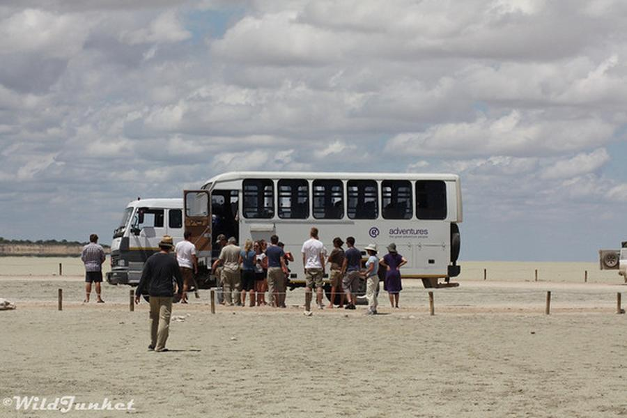 We're back with our weekly recap of some of our favorite blog posts we read this past week. Let's get into it… Nellie Huang of Wild Junket travelled with us to Africa a few months ago and reported on it this week in a great blog post titled 'Overlanding in Africa: Tips and Reviews'. Cats [&hellip