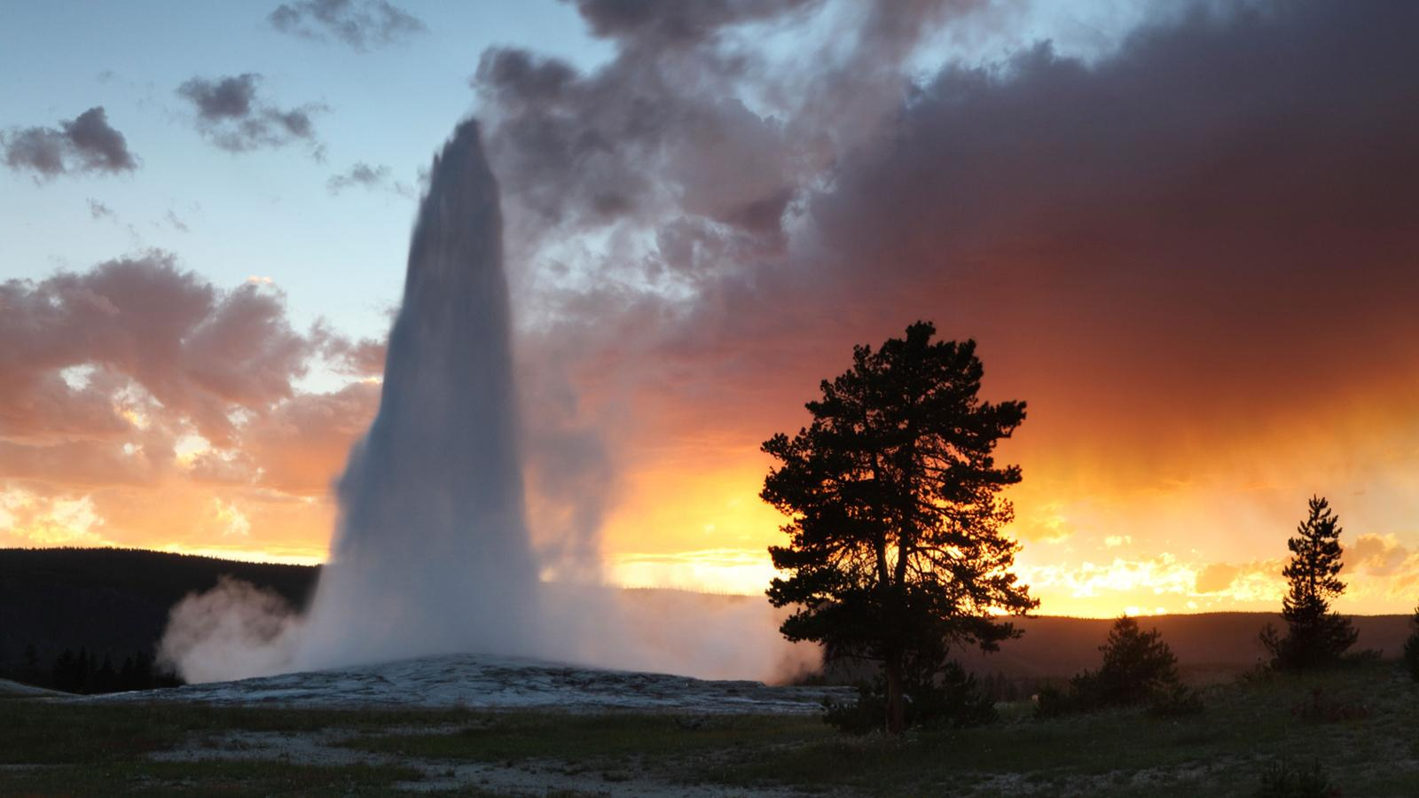 A geyser shooting hot water up in the air in Yellowstone, Wyoming