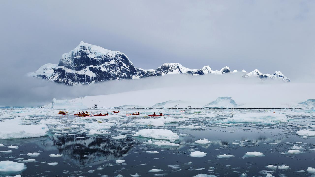 Researchers Directly Observe Microbial Activity in Polar Snow for ...