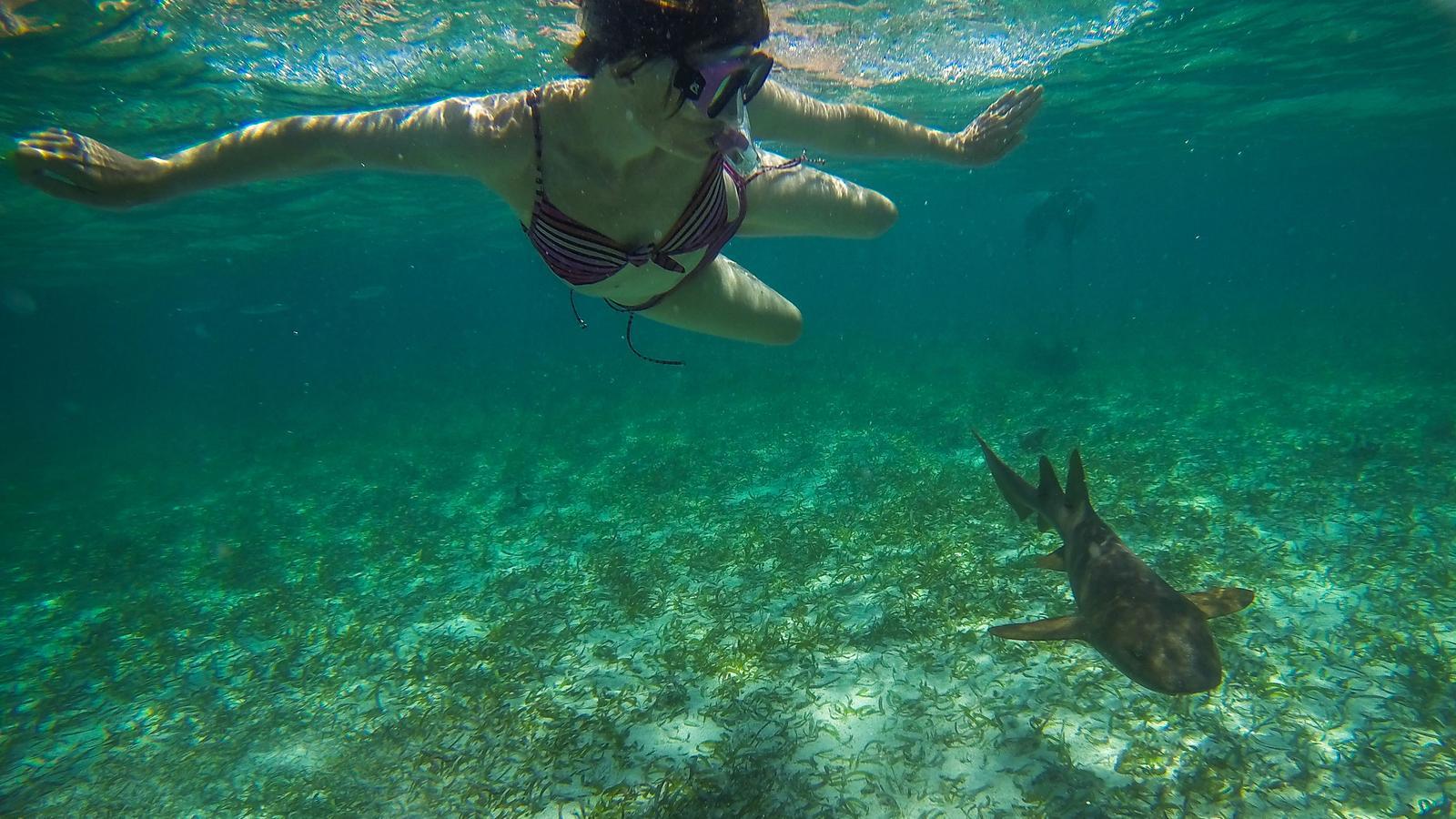 Island Adventure Tours Belize