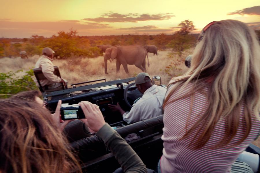 An African safari may be a once-in-a-lifetime experience — and one that can be truly magical for photographers