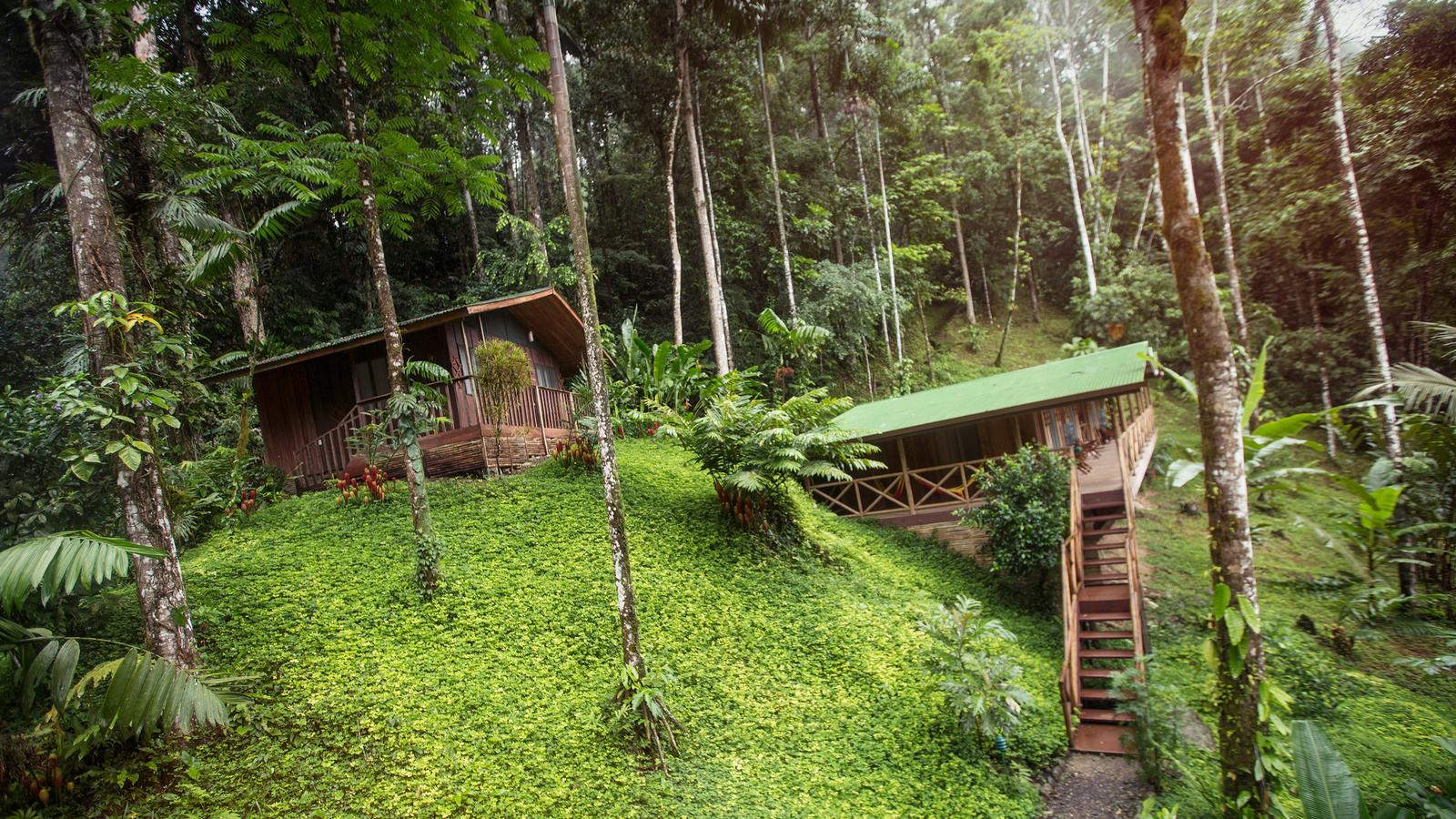 The gorgeous Pacuare lodge rests in the middle of the rainforest, Costa Rica