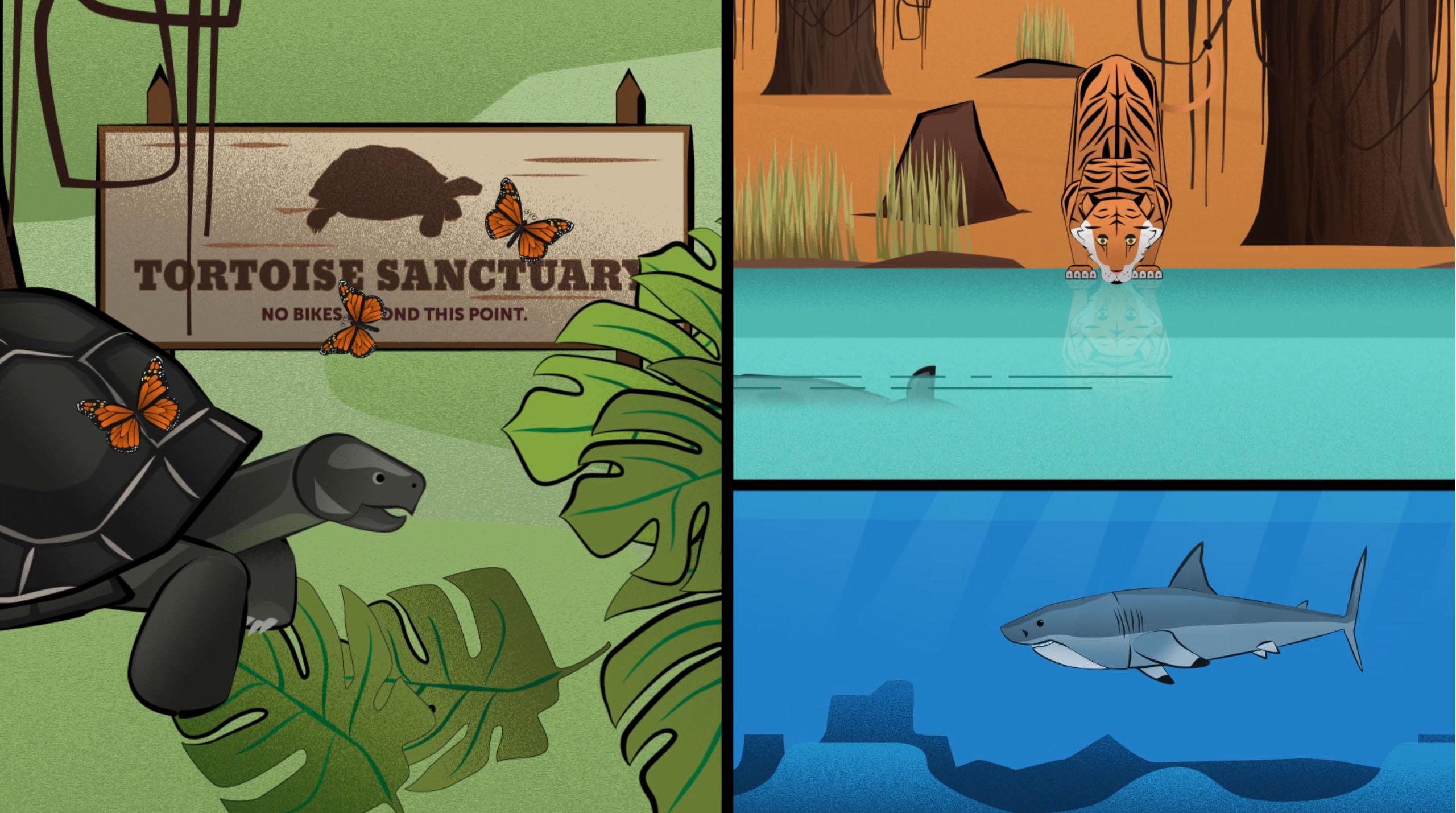Help keep animals safe in their natural habitats