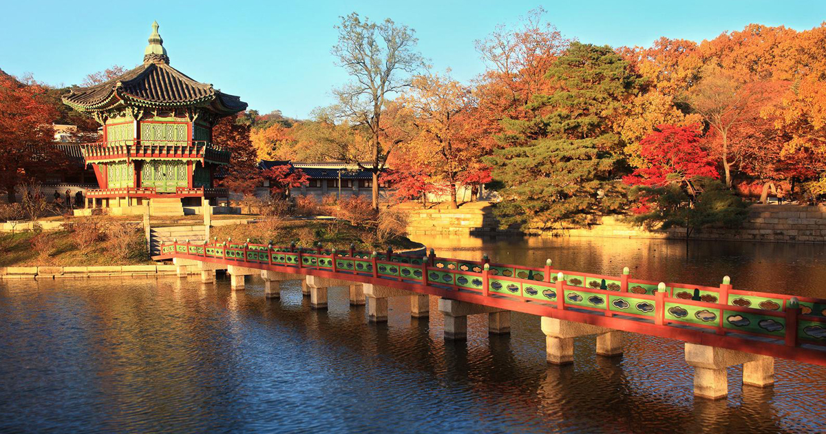 South Korea Tours & Travel - G Adventures