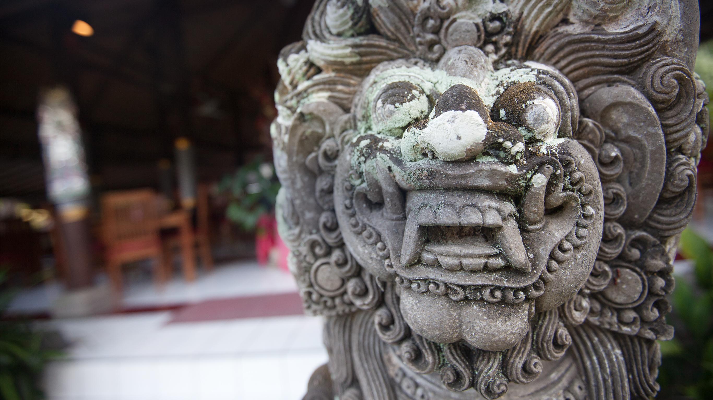 Stockists of Bali, Flores & Komodo Explorer
