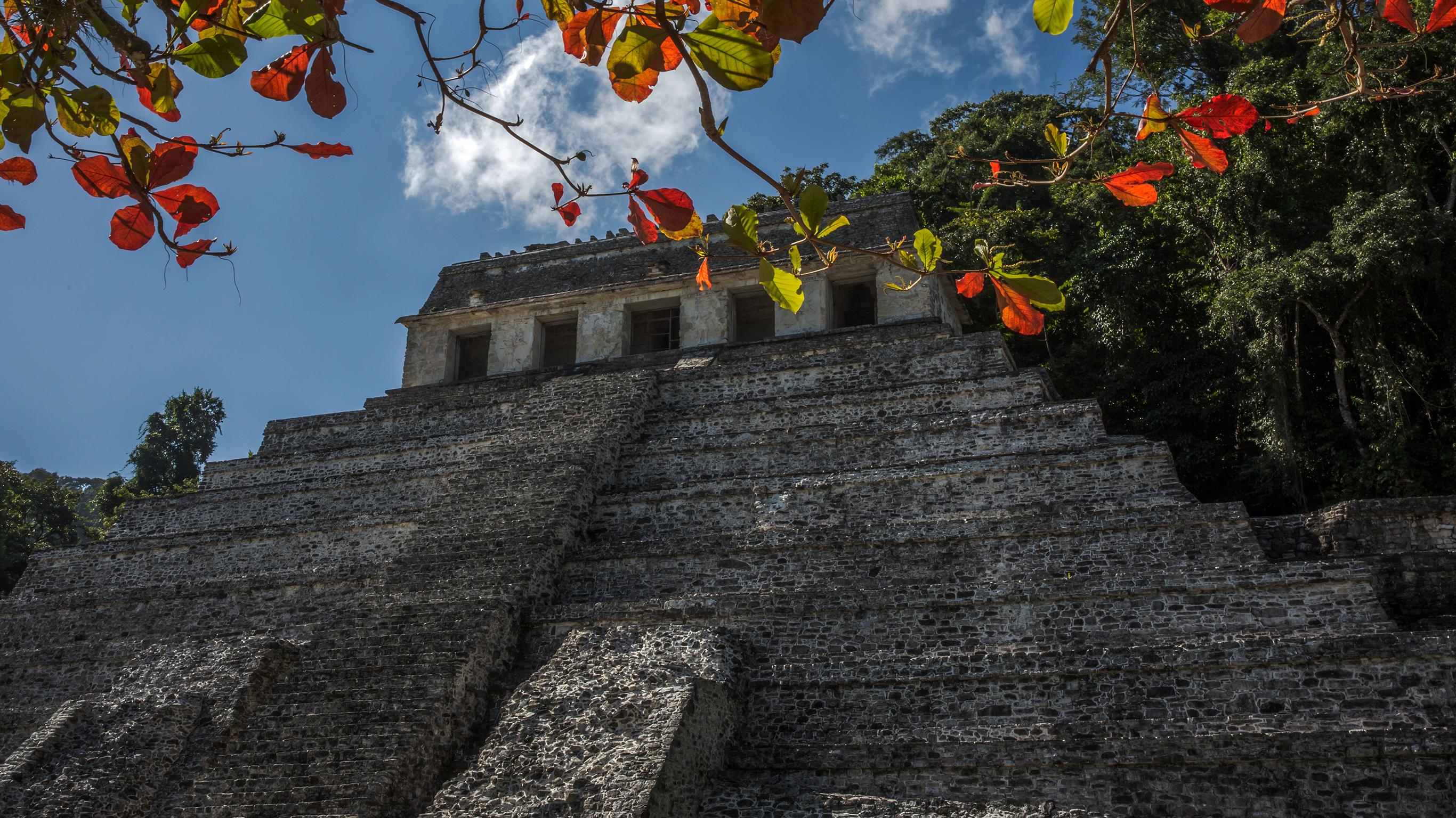 Maya-Trail