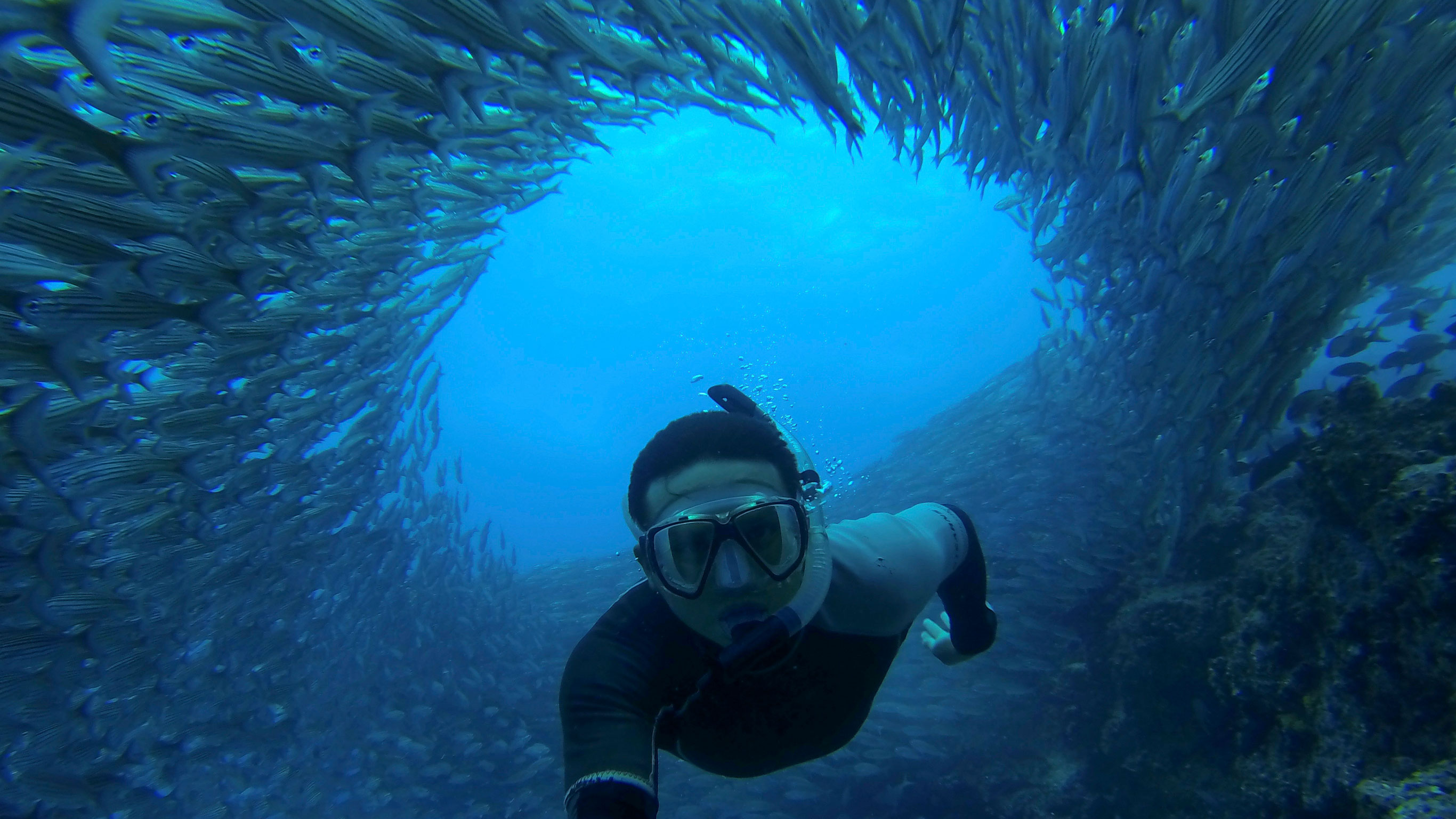 Galápagos – Central and East Islands aboard the Integrity