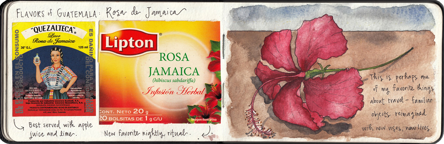 An homage to the beautiful hibiscus flowers — and hibiscus-infused products — that filled my days in San Pedro.