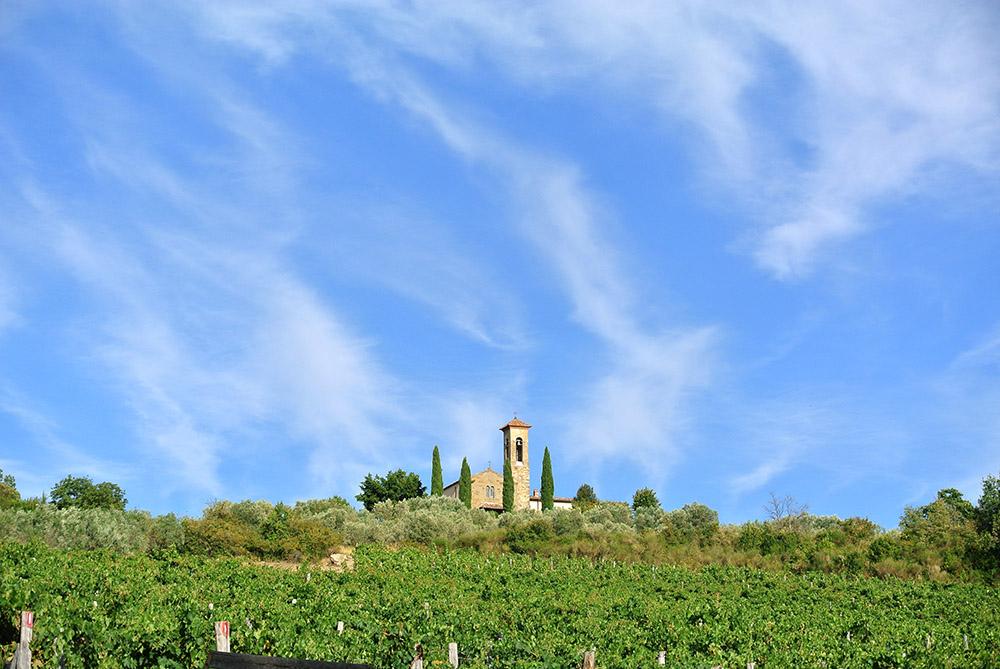 The scenic landscape surrounding Azienda Agricola Enrico Baj Macario, in Tuscany.
