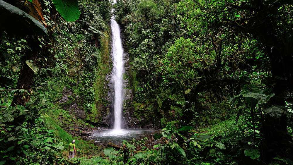 There are several to chose from in Mindo. Here's Esperanza waterfall. Photo courtesy Guenter.