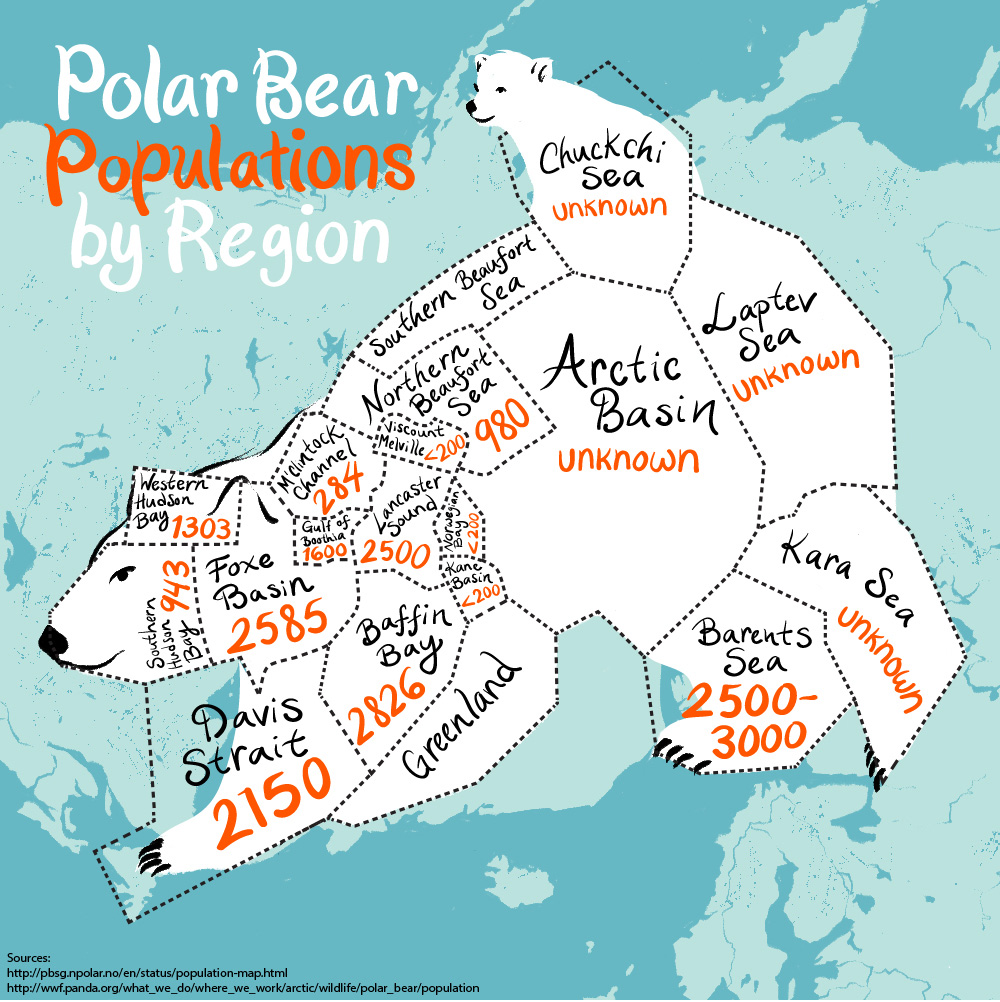 An Illustrated Map Of The Worlds Polar Bear Population G Adventures - Map of where polar bears live