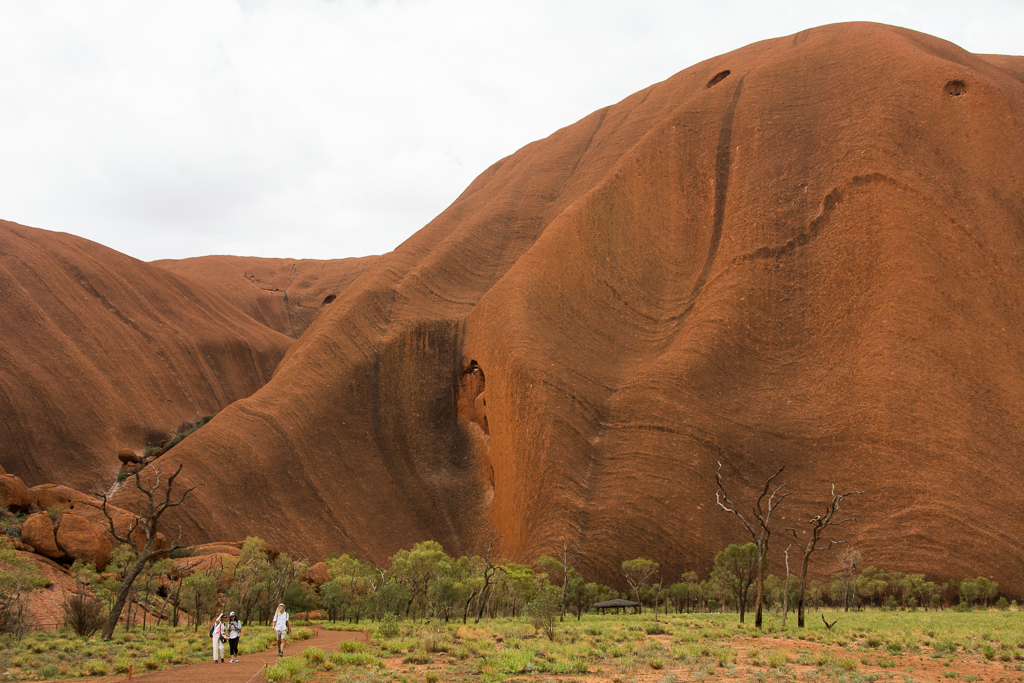 Understanding the meaning of Uluru's marks and contours through listening to an Anangu story.