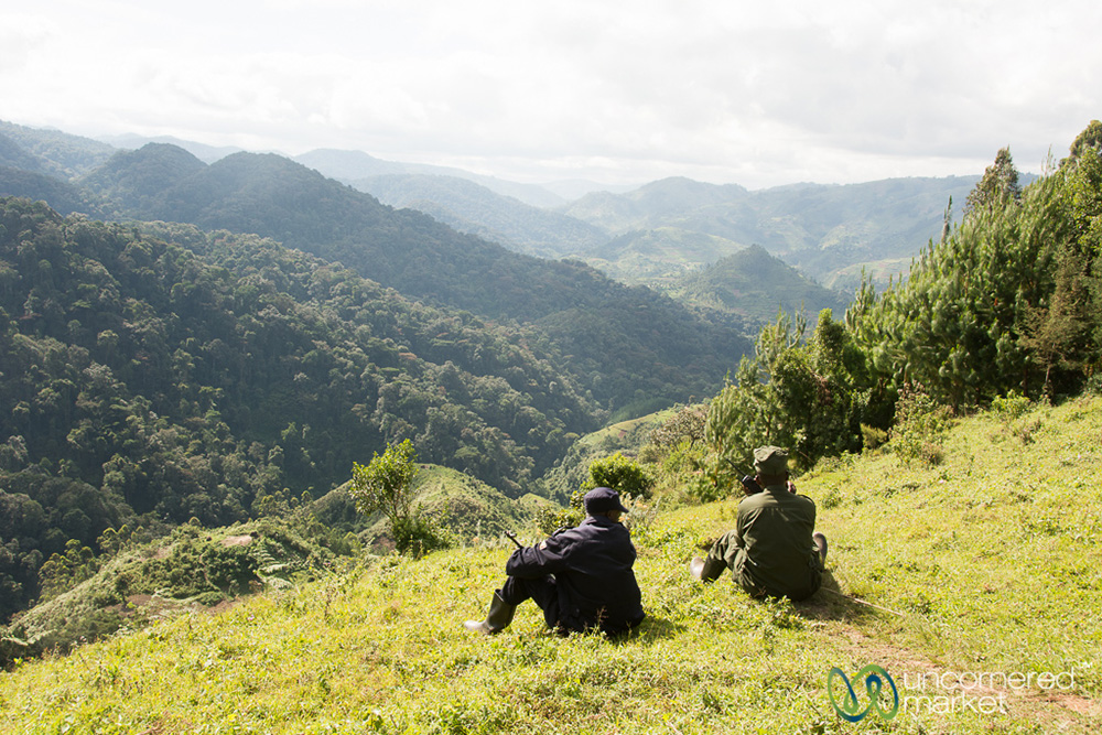 Our guide and one of the scouts wait for word over the radio from a tracker in the forest as to the location of the gorilla family.