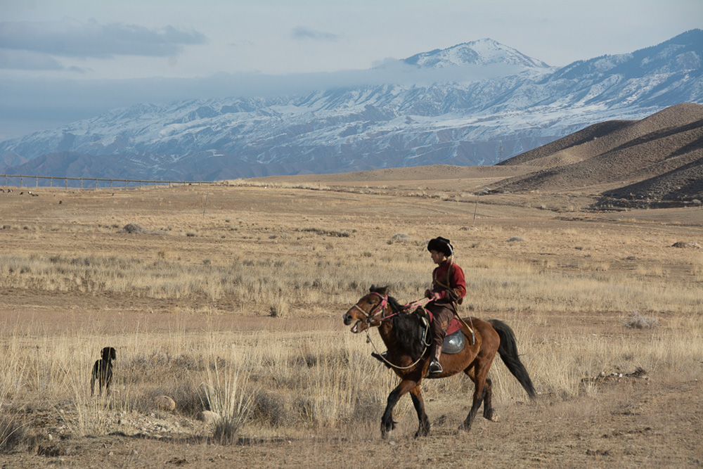 """Hunter, horse, and """"taigan"""" dog work together with the golden eagle in """"Salbuurun."""""""