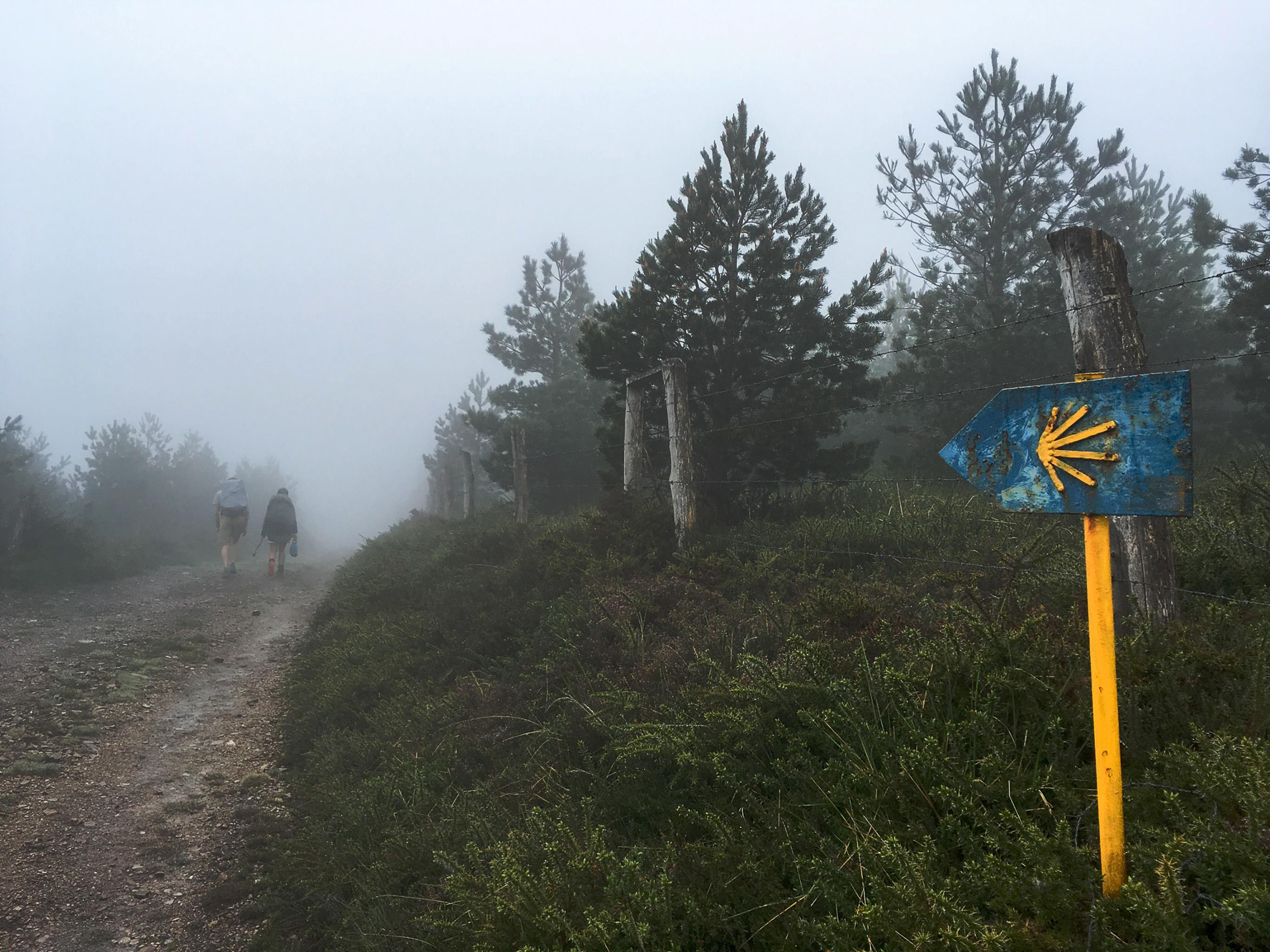 10 Best Trail Shoes For Pilgrims Walking Camino De Santiago