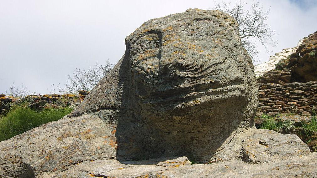 The mighty protector of Kea. Photo courtesy Wikipedia.