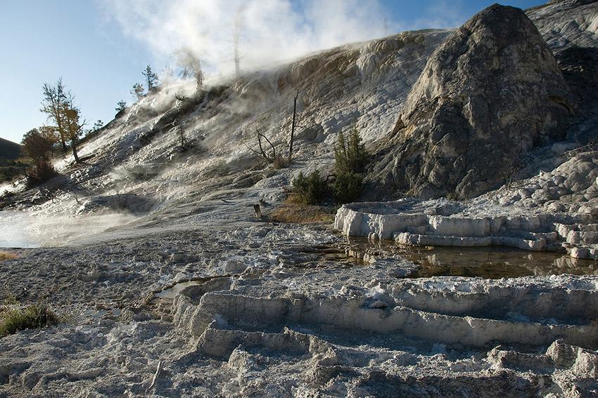 Geysers in Yellowstone NP.