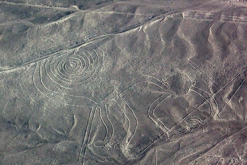 Spotting for monkeys, Nazca Lines style. Photo courtesy Colm L.