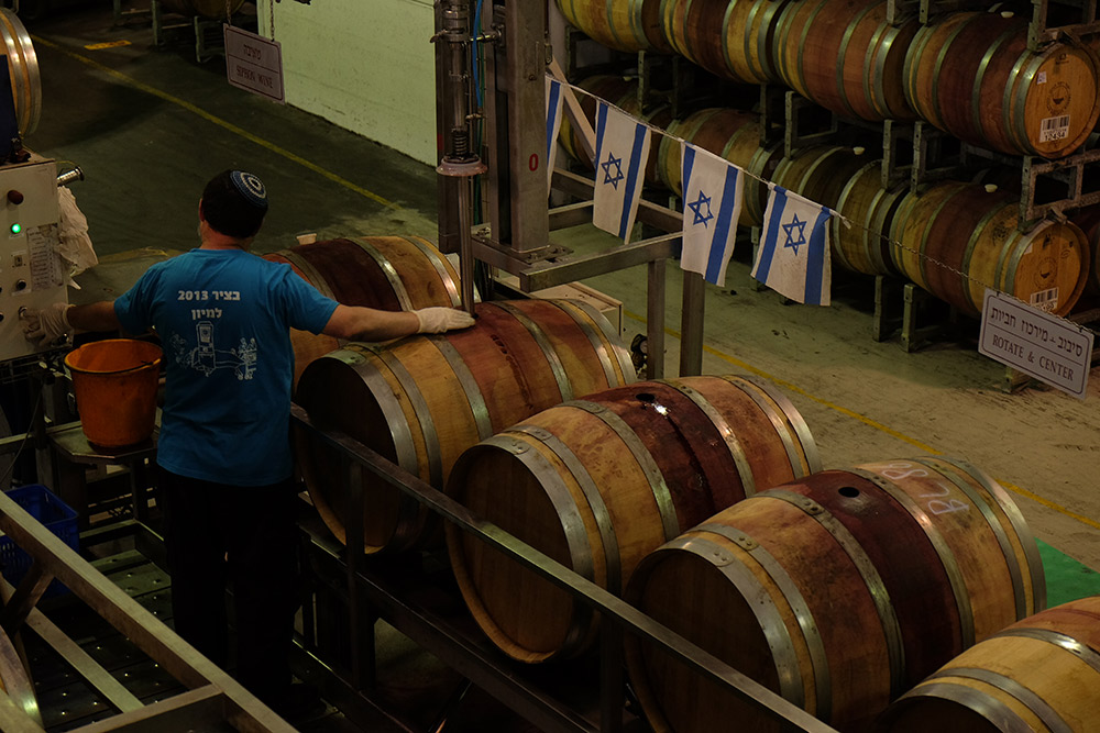 Filling the wine barrels at the Golan Heights Winery.