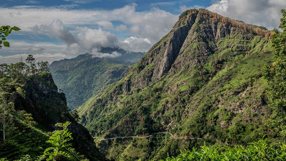 Fall in love with Sri Lanka's central hills.