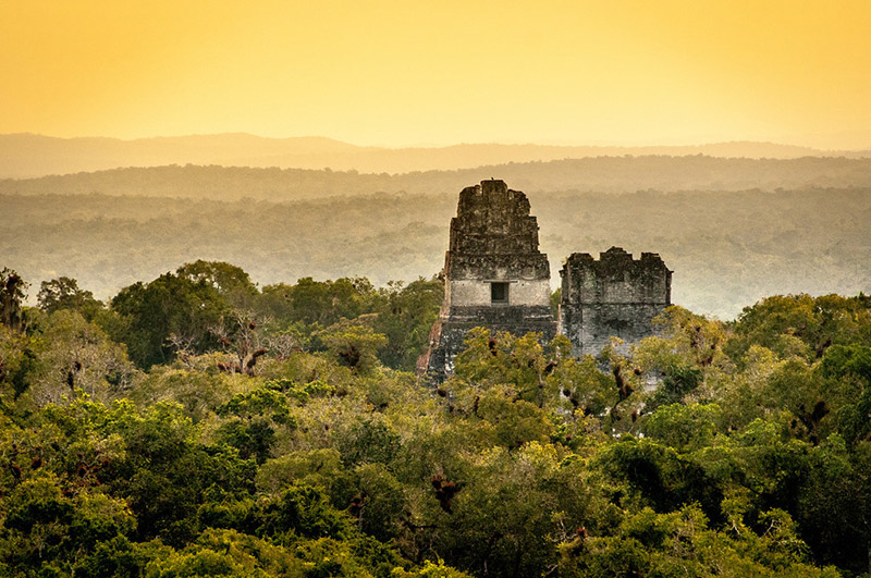 Jungle at sunset from atop Temple IV in Tikal. Photo courtesy Gary Arndt.