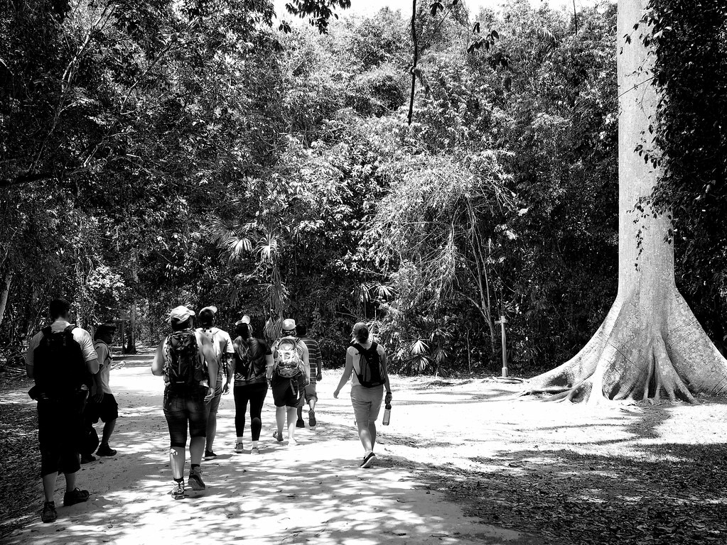 Jodi's group heading into the Tikal National Park on her G Adventures tour.