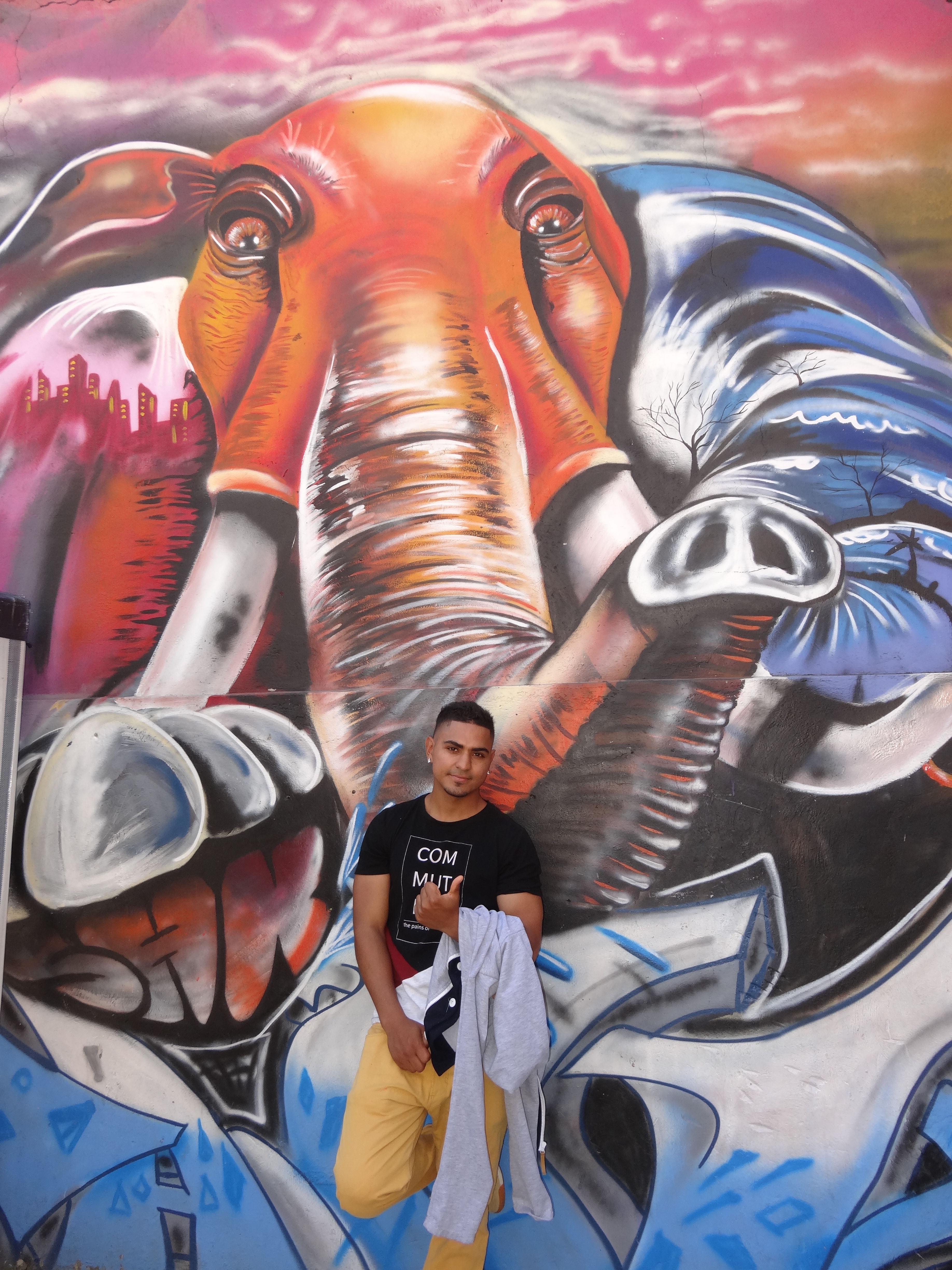 Colombian street artist Chota often uses elephants in his work, as a reminder to never forget Medellin's troubled past.