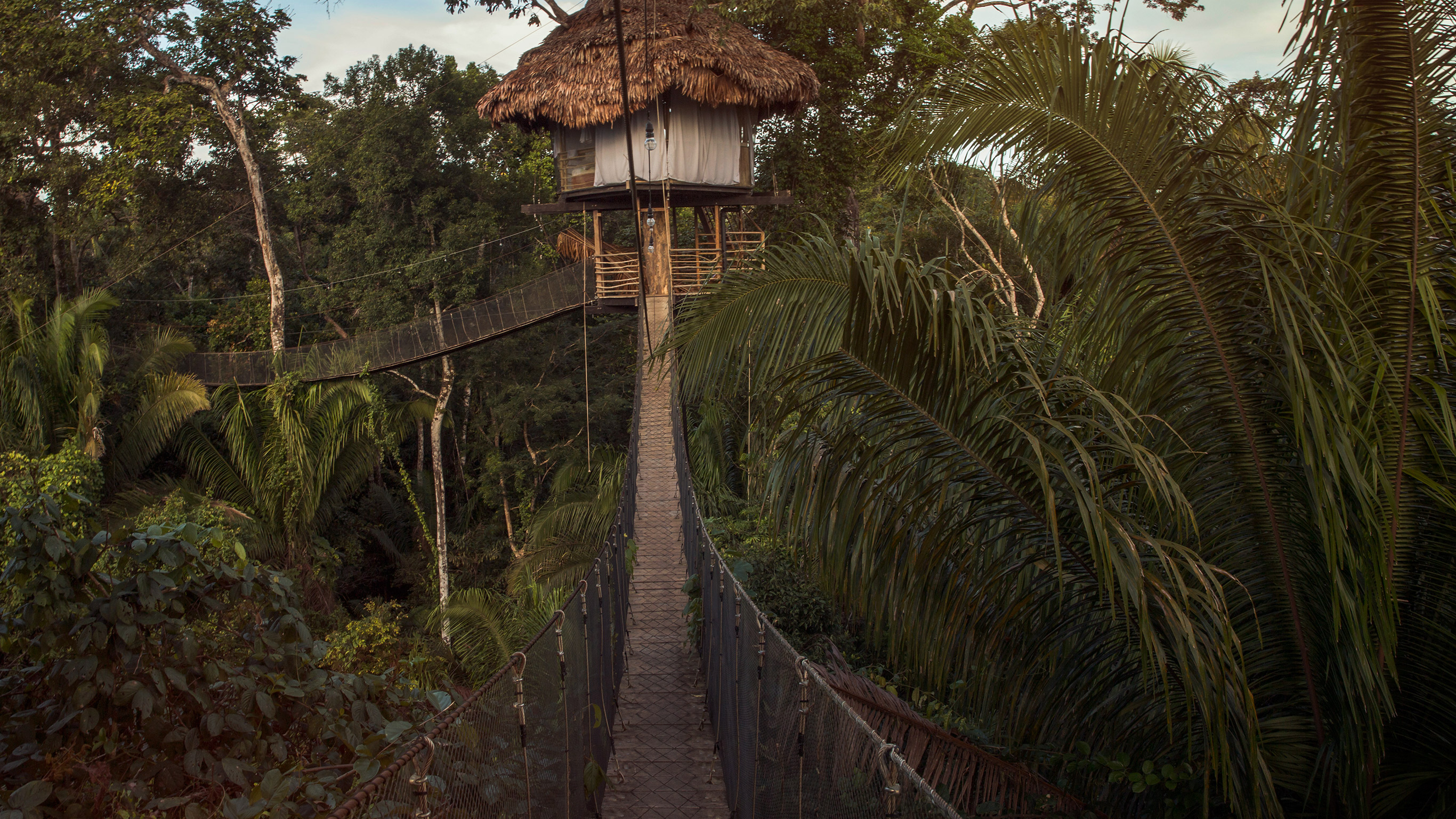 Working Together Tourism And The Amazon S Indigenous