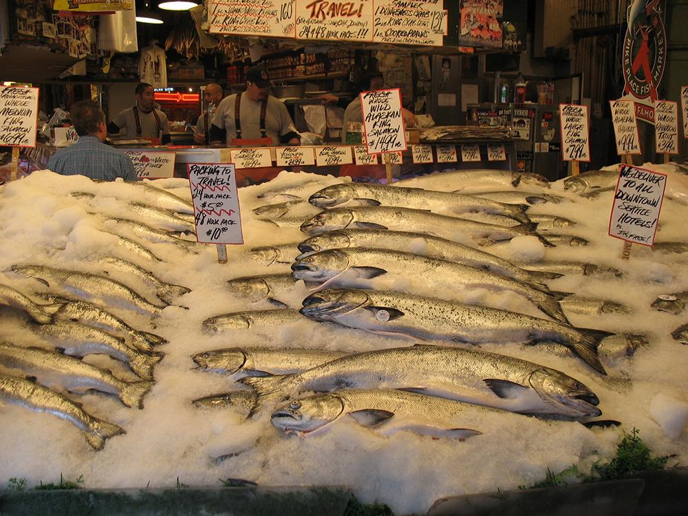 Salmon for sale in the markets of Seattle. Photo courtesy of bimmerfan99.